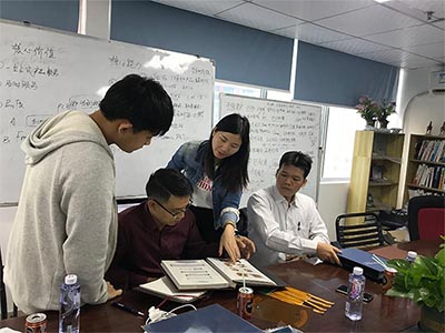 Connie is introducing metal dome